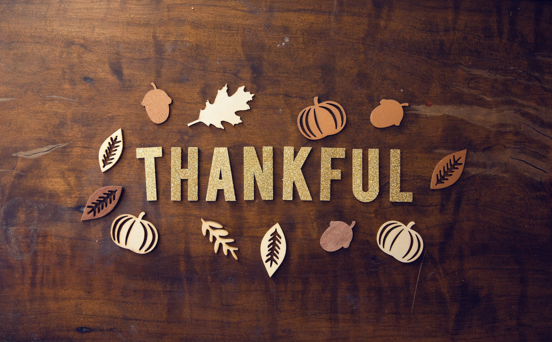 Counselor's Hub: Happy Thanksgiving